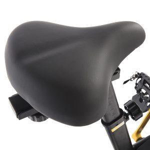 Bodymax B2 Exercise Bike